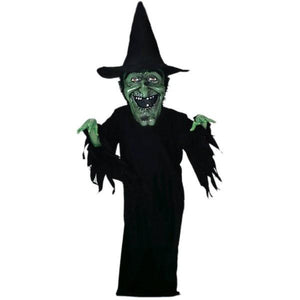 Witch Mascot Costume