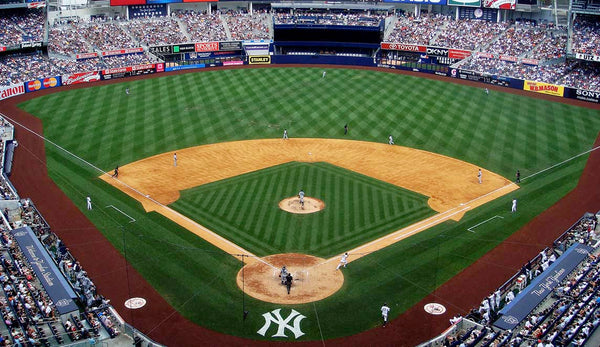 new york yankees, new york, baseball, mlb