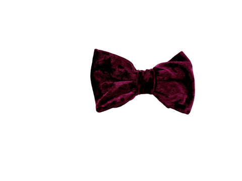 Eggplant purple velvet bow tie