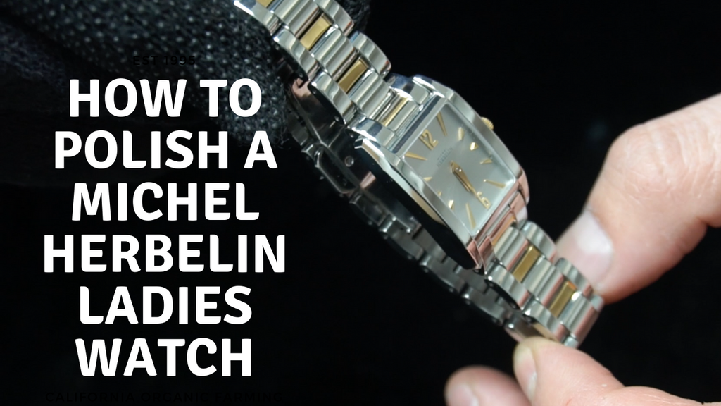 Professional Polish: Michel Herbelin Two-Tone Ladies Watch