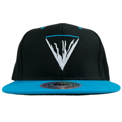 The Mountain Will Fall Snapback