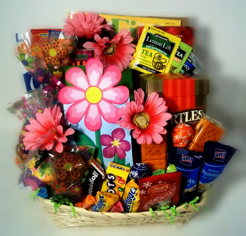 Daisey Snacks Goodie Gift Basket