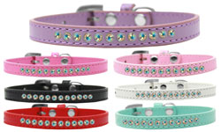 Puppy Collar Group Display