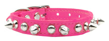 Chasers- Punk Rock Pet Collars