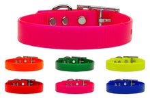 Tropical Jelly Plain Collars