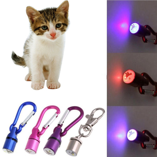Hot Selling 1Pcs Cute Keychain Style Safety Flashing LED Signal lamp Pet Dog Collar Pendant Charms Pets Products