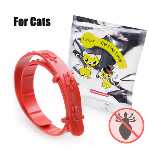 Small Dog and Cat Flea & Tick Collar