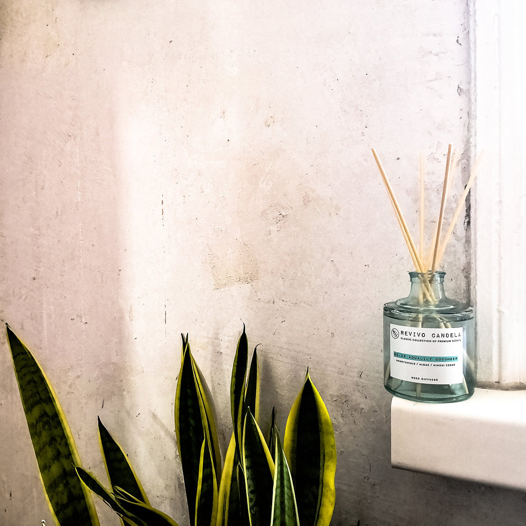 Revvio Candela Classic Collection Reed Diffuser