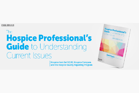 FREE EBOOK The Hospice Professional's Guide to Understanding Current Issues