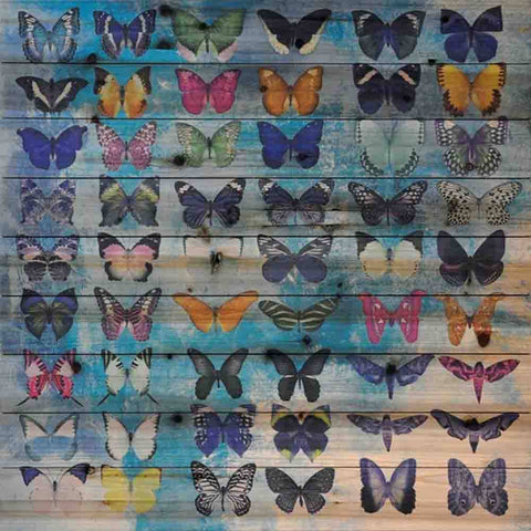 Butterflies ~ Solid Fir Wood Planks - Cece & Me - Home and Gifts