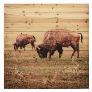 Bison ~ Solid Fir Wood Planks - Cece & Me - Home and Gifts
