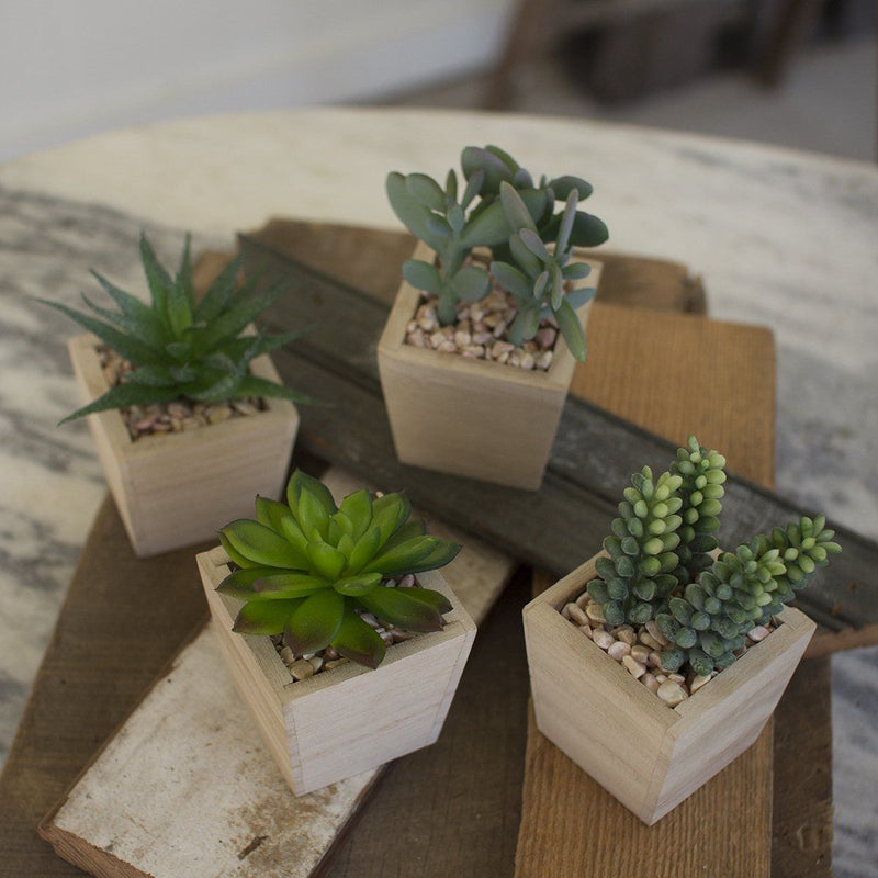 Artificial Succulents In A Wooden Pot (Set of 4) - Cece & Me - Home and Gifts