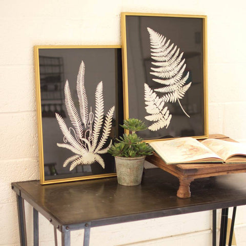 Black and White Fern Prints Under Glass (Set of 2) - Cece & Me - Home and Gifts