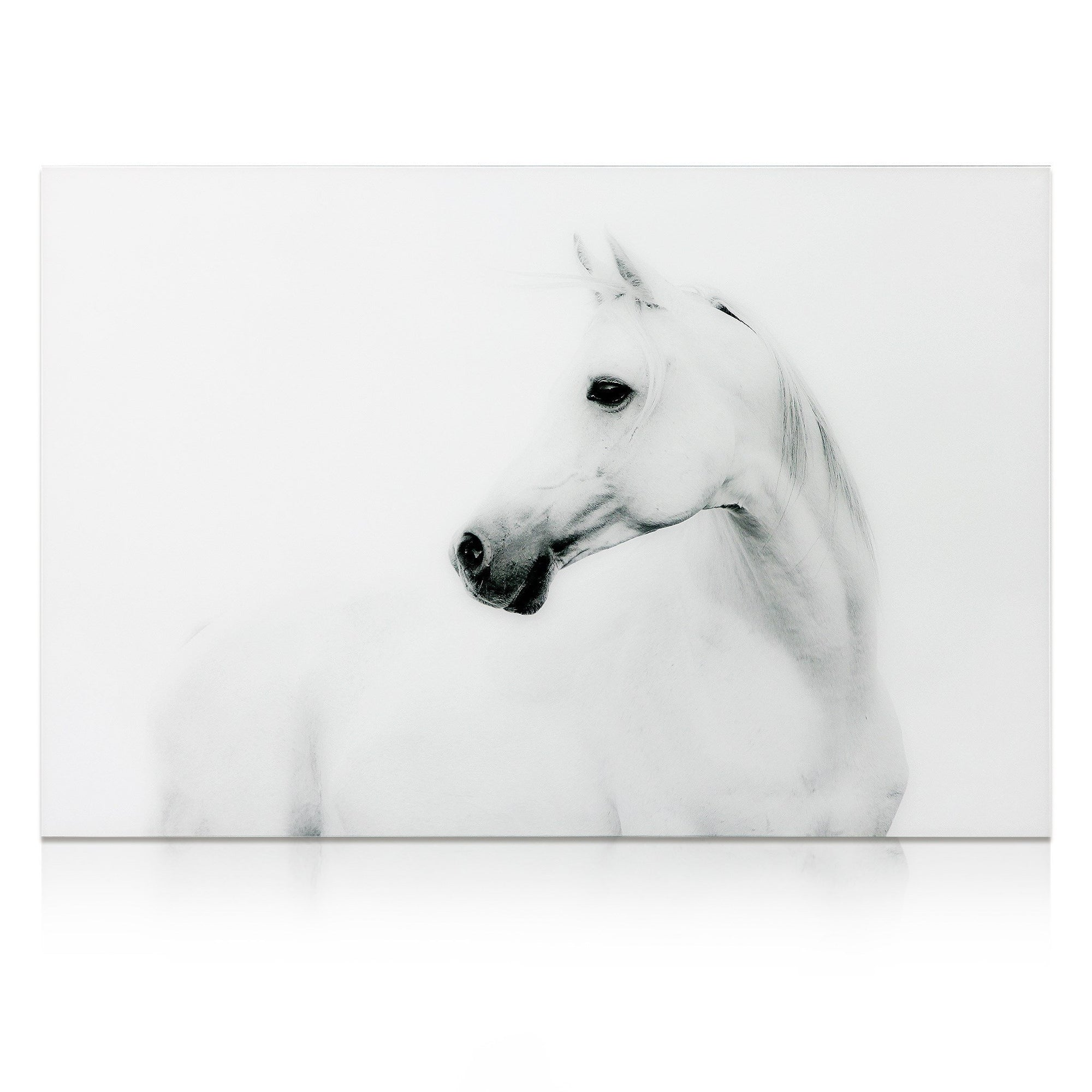 Blanco Stallion Horse ~ Tempered Art Glass - Cece & Me - Home and Gifts