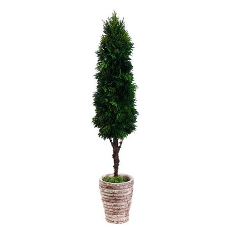 "Cedar Cone Topiary in Cement Pot Green - 32""H - Cece & Me - Home and Gifts"