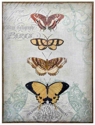 Image of Painted Butterflies ~ Plaster Jute - Cece & Me - Home and Gifts