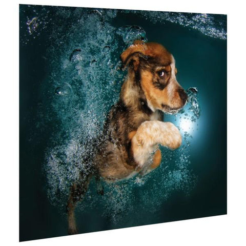 Image of Foxhound Pup ~ Tempered Art Glass - Cece & Me - Home and Gifts