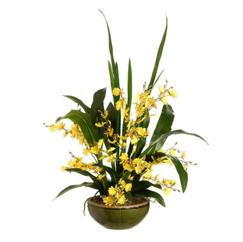 Oncidium Orchid in Bowl Yellow - Cece & Me - Home and Gifts