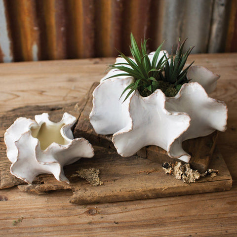 Organic Ceramic Planters (Set of 2) - Cece & Me - Home and Gifts