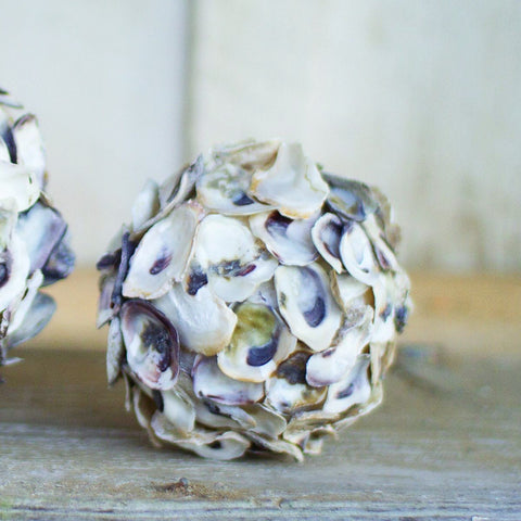 Oyster Shell Sphere (Set of 4) - Cece & Me - Home and Gifts