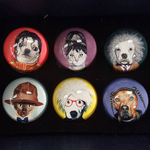 Image of Pets Rock Magnets (Set of 6) - Cece & Me - Home and Gifts