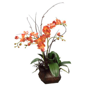 Phalaenopsis/Twig in Metal Container ~ Orange - Cece & Me - Home and Gifts