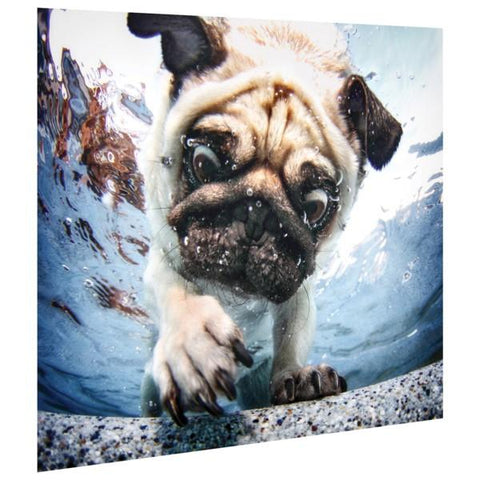 Pug ~ Tempered Art Glass - Cece & Me - Home and Gifts