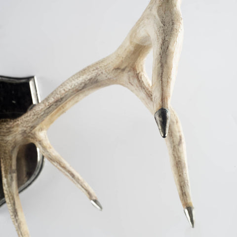 Sika Deer Antlers - Cece & Me - Home and Gifts