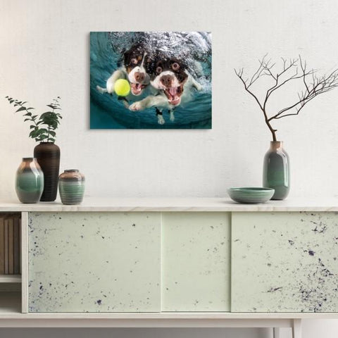Springer Spaniel ~ Tempered Art Glass - Cece & Me - Home and Gifts