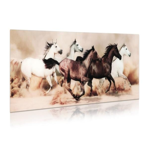Stampede ~ Tempered Art Glass - Cece & Me - Home and Gifts