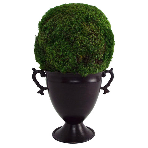 Image of Preserved Moss Ball Topiary  in Metal Trophy Vase - Cece & Me - Home and Gifts