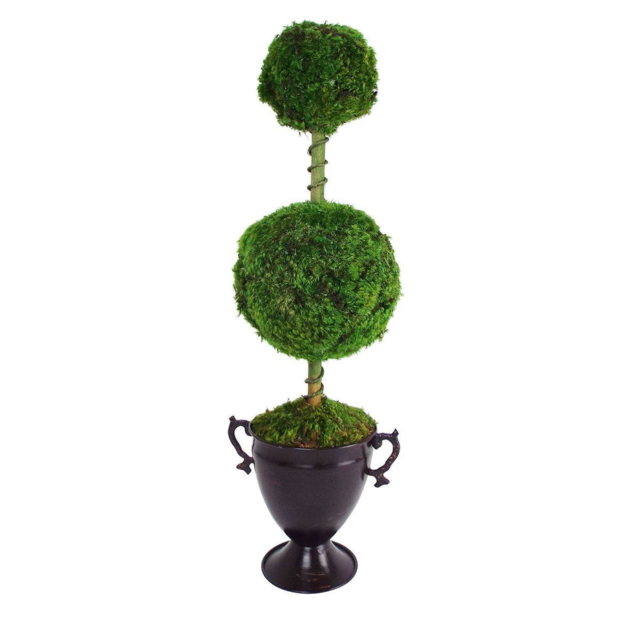 Two Balls Preserved Moss Topiary  in Metal Trophy Vase - Cece & Me - Home and Gifts