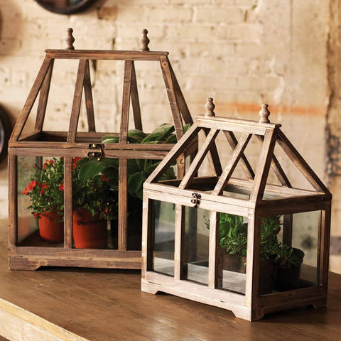 Image of Wood & Glass Terrariums (Set of 2) - Cece & Me - Home and Gifts