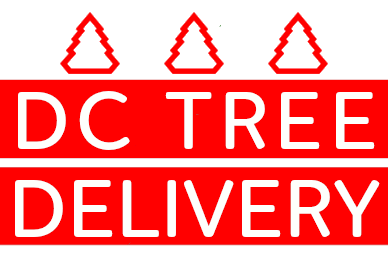 DC Tree Delivery