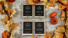 Wax Melts Fall & Holiday Bundle Buy three get one FREE!!