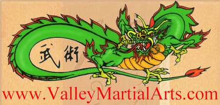 Valley Martial Arts Supply