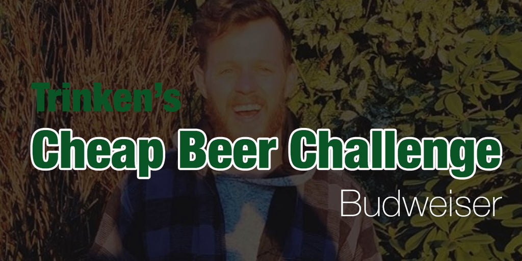 Cheap Beer Challenge🍺Budweiser - Day 4