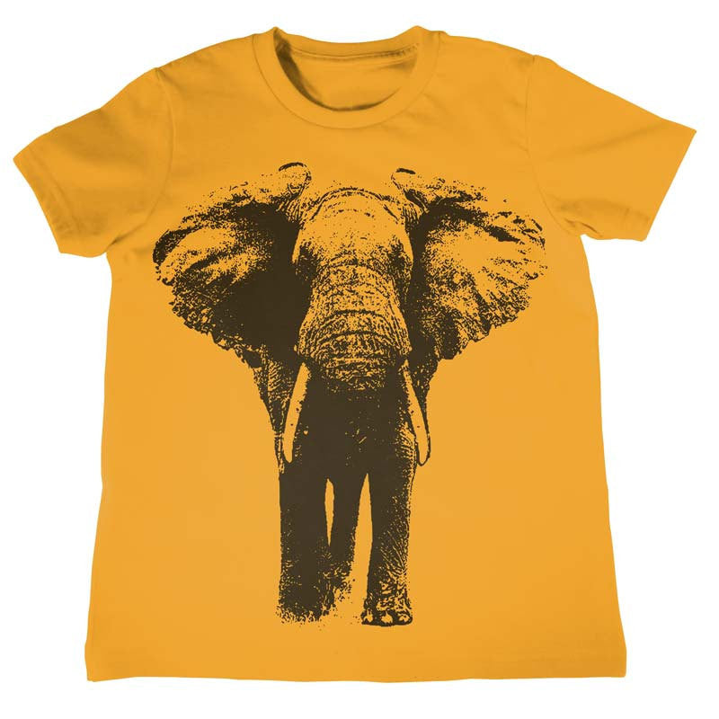 ff962e587 Kids Elephant T-Shirt Boys Girls Birthday Shirt Kids Birthday Gift Present  Gift Idea for Child 1st Birthday Zoo Field Trip Shirt Elephants