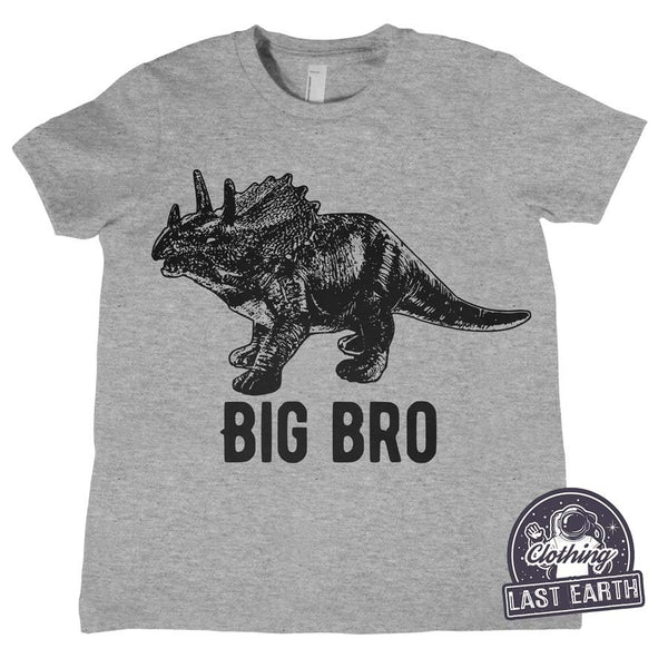 Kids Big Bro Shirt | Kids Birthday Gift | Dinosaur Shirt | Family Shirts | Birthday Shirt | Funny Shirts | Childrens Clothing | Big Brother
