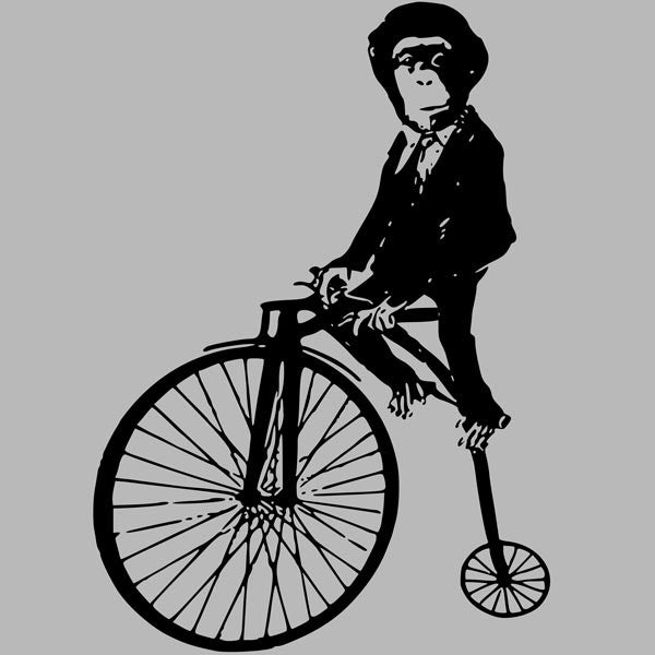 Monkey on a Bike