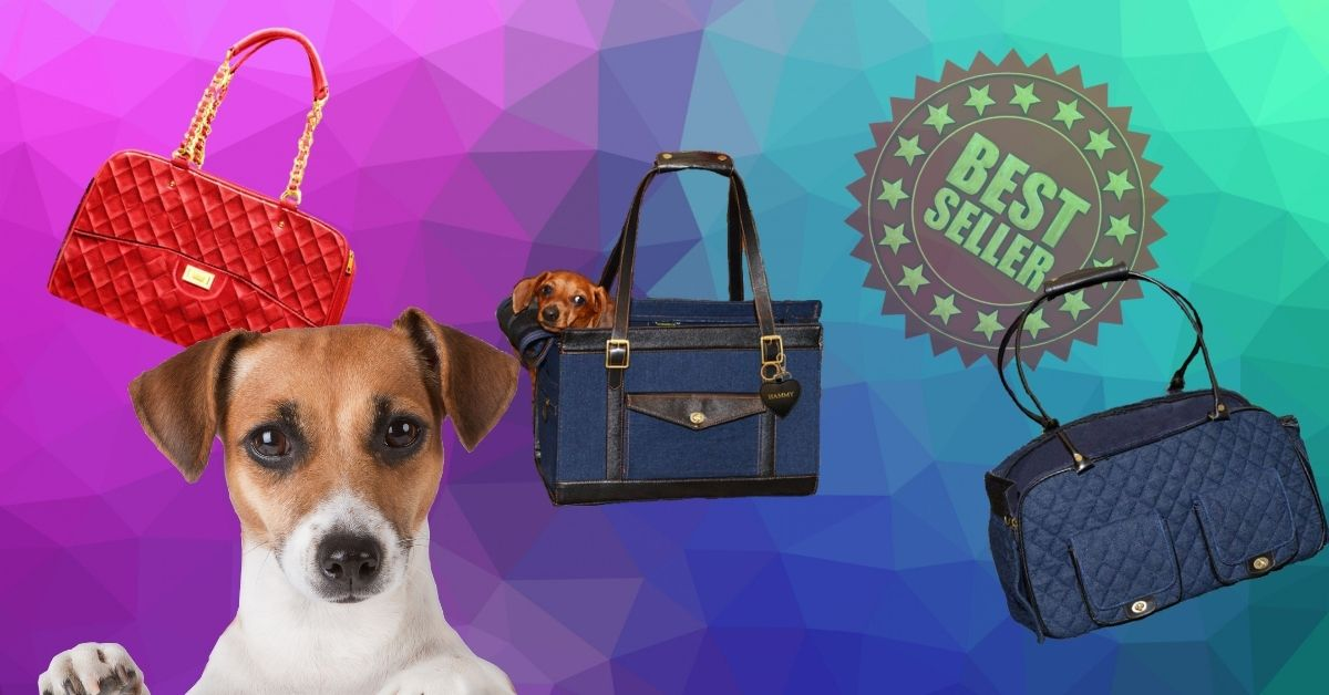 The Best Types of Small Dog Carriers for Fashionable Pet Parents