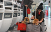 Choosing the Best Airline Approved Pet Carrier