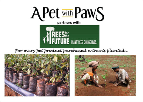 a pet with paws partners with trees for the future