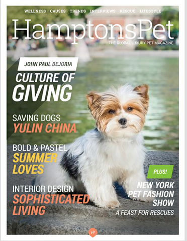Summer Hampton's Pet Magazine
