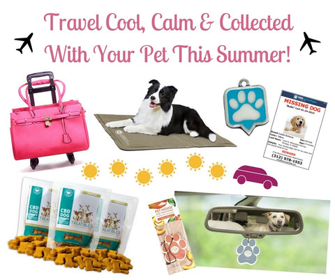Travel Cool Calm and Collected With Your Pet This Summer