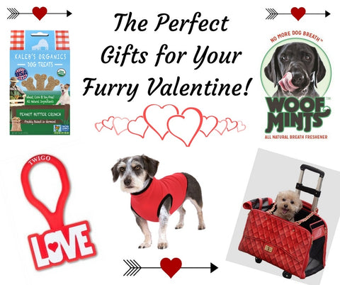 The Perfect Gifts for Your Furry Valentine