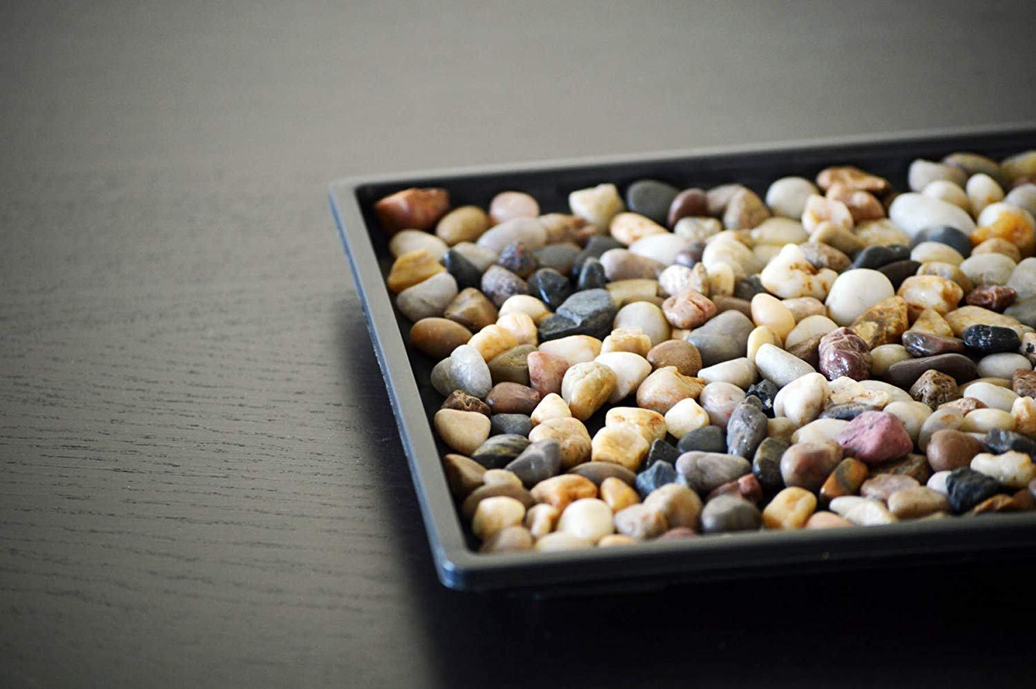 Humidity Tray with Miniature Rocks