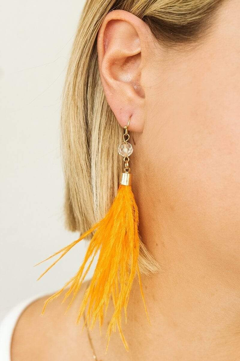 Glitzy Girlz Boutique Here For You Earrings, Orange