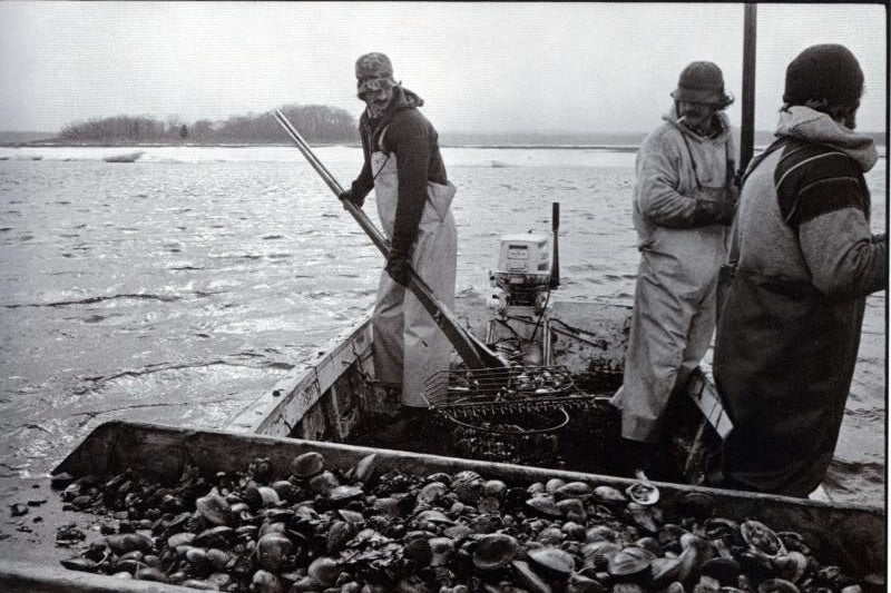 The Life of a Long Island Clammer- The Inspiration Behind the Noah Reversible sweatshirt
