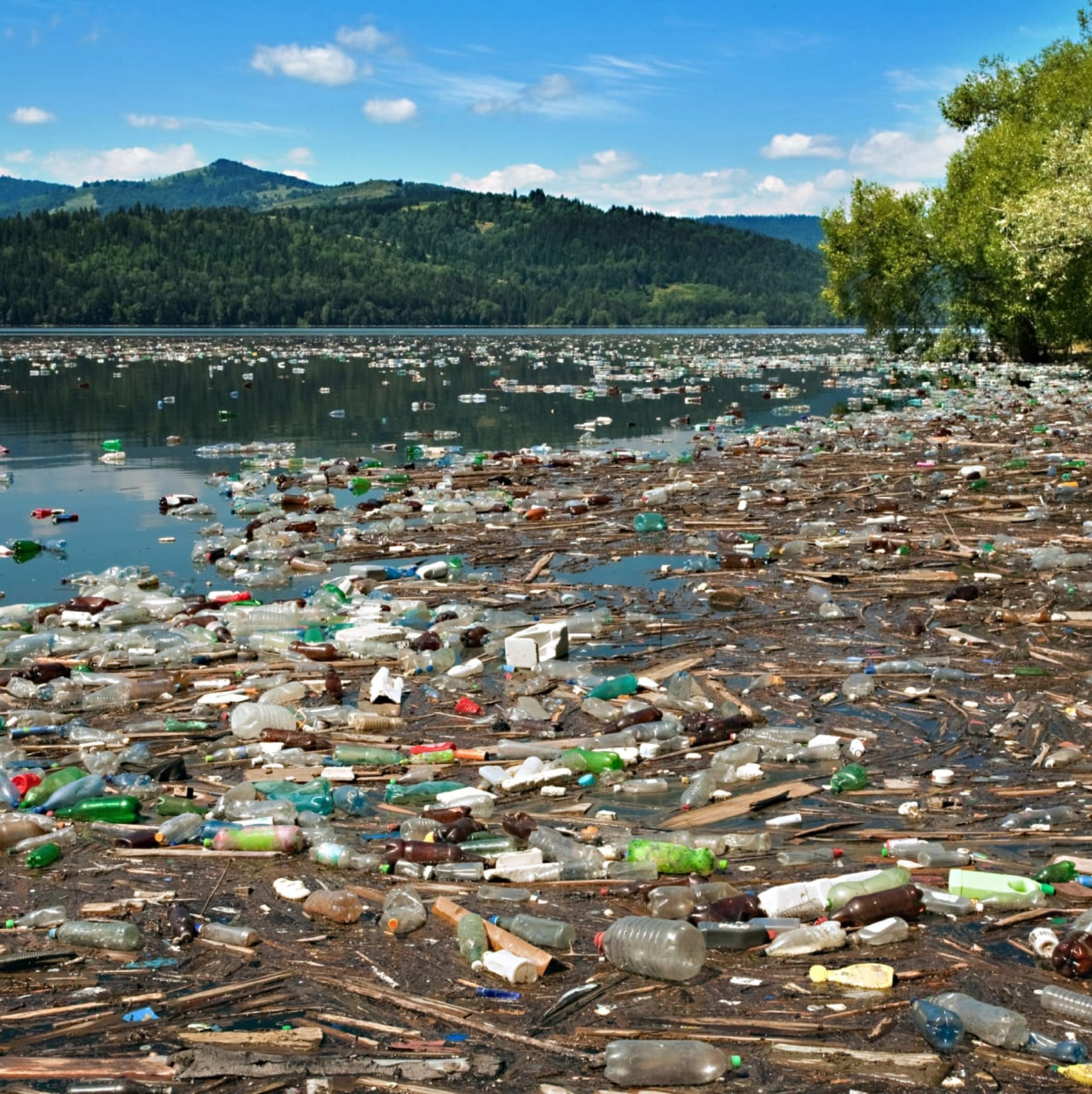 World Water Day - Pollution